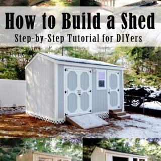 Building a Shed from Scratch – Phase 2