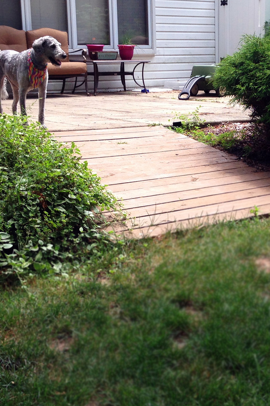 Backyard boardwalk DIY
