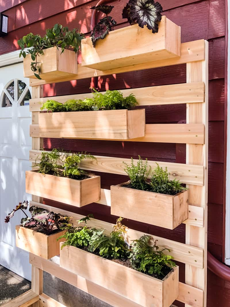 Handyman's Daughter Vertical Garden